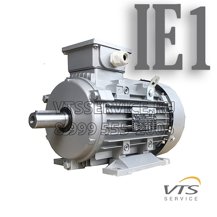 Двигатель VTS IE1